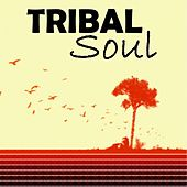 Tribal Soul by Various Artists