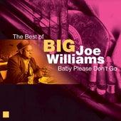 Baby Please Don't Go (The Best of) de Big Joe Williams