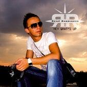 Hey What's Up by Rene Rodrigezz