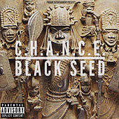 Black Seed by Chance