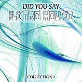 Did You Say Electro House?, Vol. 1 von Various Artists