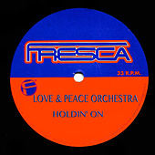 Holdin' On by Peace Orchestra
