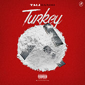 Turkey by Talibando