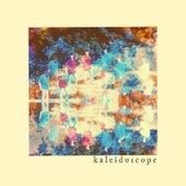 Kaleidoscope de Octopus