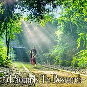 51 Sounds To Research von Lullabies for Deep Meditation