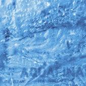 Aquafina (feat. Kap G) by Joe Trufant