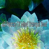 63 Peace Of Mind Tranquil Soul by Classical Study Music (1)