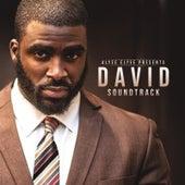 Alyze Elyse Presents: David (Original Motion Picture Soundtrack) de Various Artists