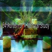 54 Auras For A Natural Study von Massage Therapy Music