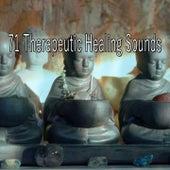 71 Therapeutic Healing Sounds de Meditación Música Ambiente