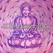 65 Zen Pulsating Tracks von Massage Therapy Music