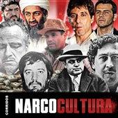 Corridos Narco Cultura de Various Artists