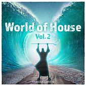 World of House, Vol. 2 von Various Artists