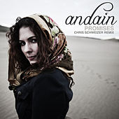 Promises (Chris Schweizer Remix) de Andain