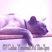 67 Calm Yourself At The Spa de Ocean Sounds Collection (1)