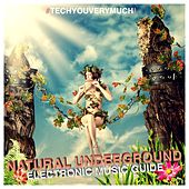 Natural Underground (Electronic Music Guide) by Various Artists