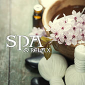 Spa & Relax de Massage Tribe