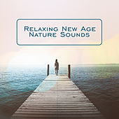 Relaxing New Age Nature Sounds de Nature Sound Collection