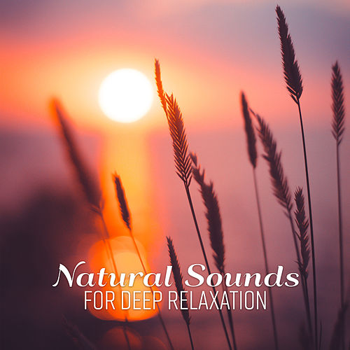 Natural Sounds for Deep Relaxation by Native American Flute