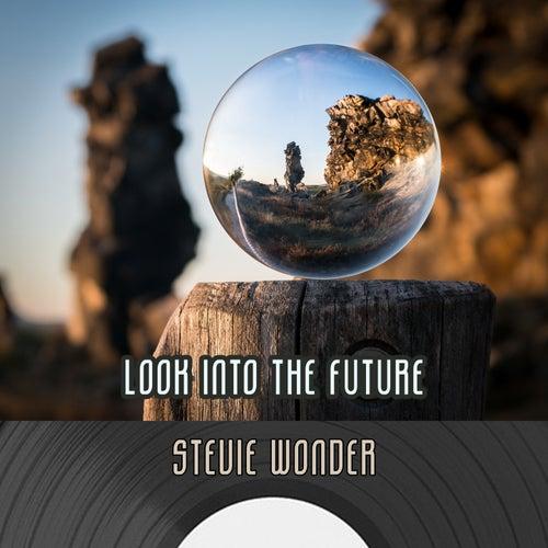 Look Into The Future de Stevie Wonder