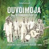 Sing 4 Comoros Forests von Various Artists