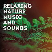 Relaxing Nature Music and Sounds de Various Artists