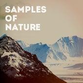 Samples of Nature de Various Artists