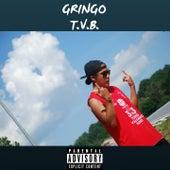 T.V.B de Gringo