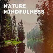 Nature Mindfulness de Various Artists