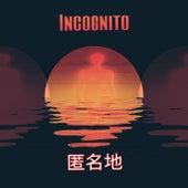 Incognito de Feng Shui