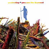 You Are the Harvest de Yesterday