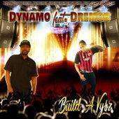 Build a Vybz (feat. Dremob) de Various Artists