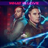 What Is Love de Exile44