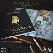 Wakanda by Ninjiizu