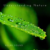 Understanding Nature by Relax Sound