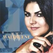 Maior Riqueza de Waldilene
