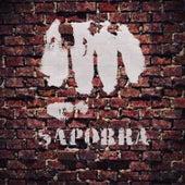 Alienado (Demo) by Saporra