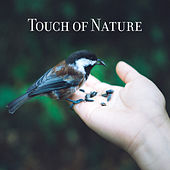 Touch of Nature - Relaxing Music for Spa de Sounds Of Nature