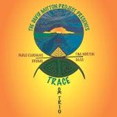 Trace (feat. Pablo Eluchans & Tim Norton) van The David Mitton Project