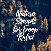 Nature Sounds for Deep Relax de Nature Sound Collection