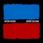 Nation Divided by George Colligan