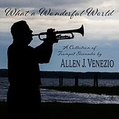 What a Wonderful World de Allen J. Venezio