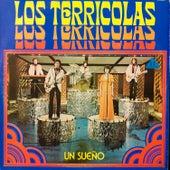 Un Sueno by Los Terricolas