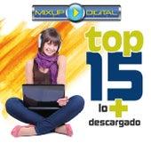 Mixup Digital Top 15 Lo + Descargado de Various Artists
