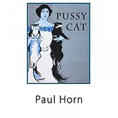 Pussy Cat by Paul Horn