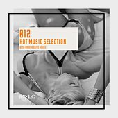 Hot Music Selection, Vol. 12 de Various Artists