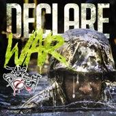 Declare War by Blaq Poet