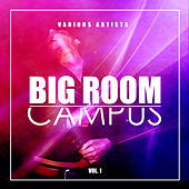 Big Room Campus, Vol. 1 - EP by Various Artists