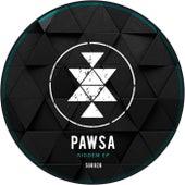 Riddem - Single by PAWSA