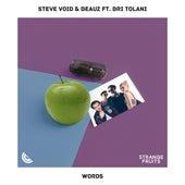 Words (feat. Bri Tolani) von Steve Void